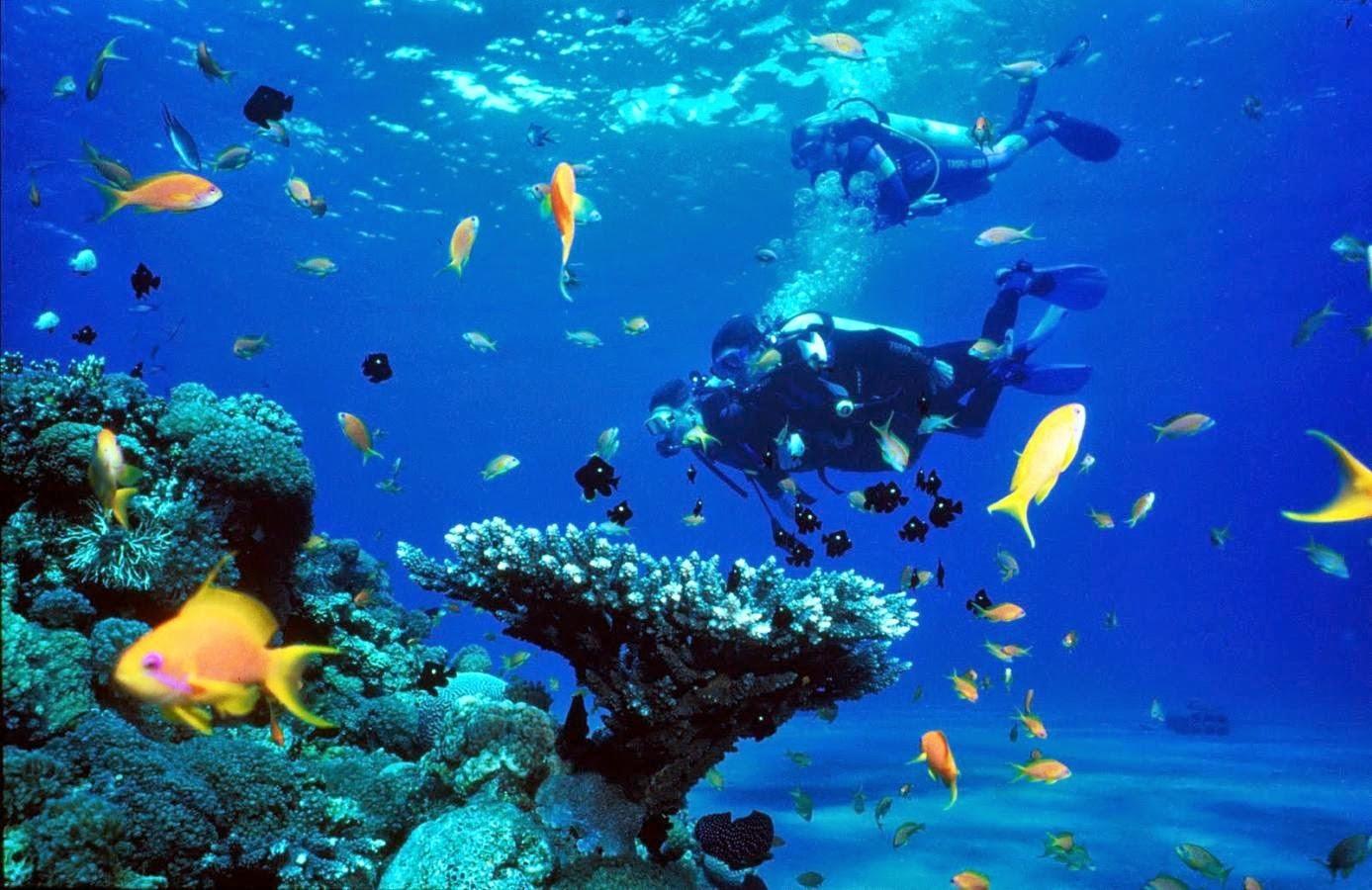 Antalya Trips Price