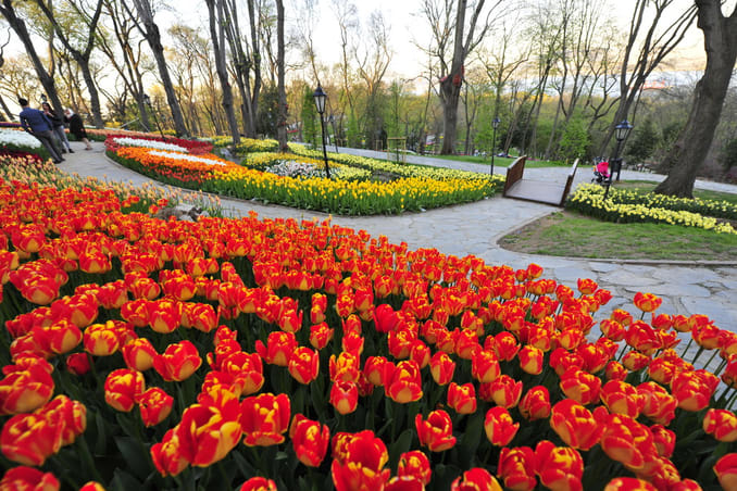 موقع حديقة اميرجان في اسطنبول