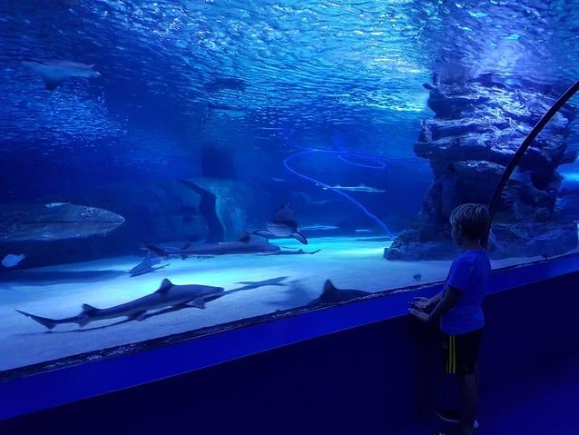 اماكن سياحية في انطاليا للاطفال