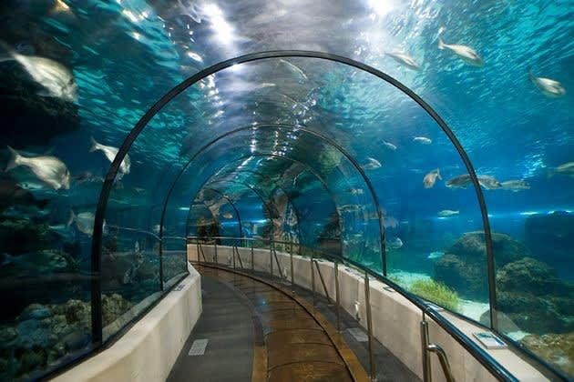 Aqua Florya Mall in Istanbul