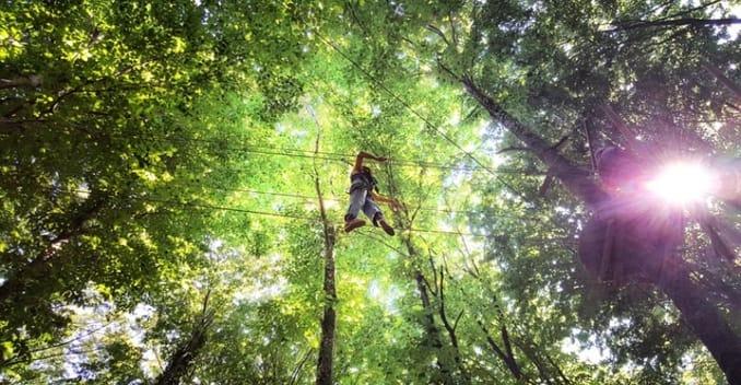 Forestanbul – Turkey's Biggest Adventure Park