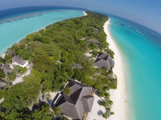 الشواطئ المضيئة جزر المالديف ليلا