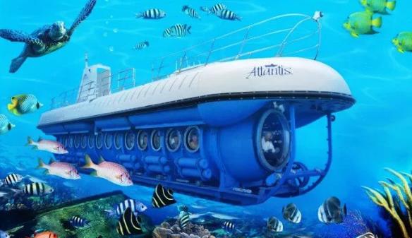 ركوب الغواصة في جزر المالديف