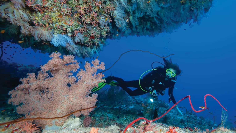 Diving in Maldives islands