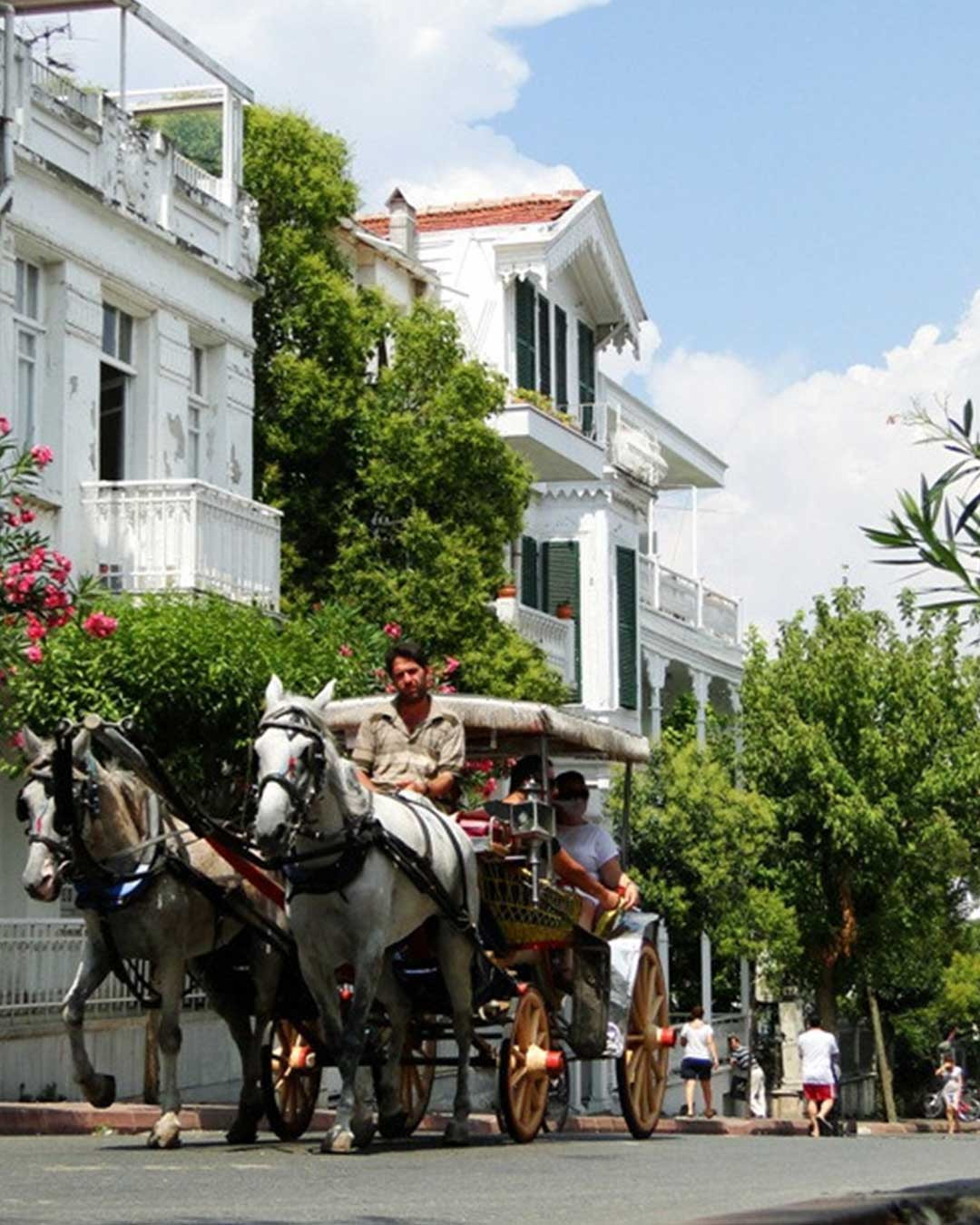 The Amazing Triple Offer: Istanbul - Sapanca – Bursa