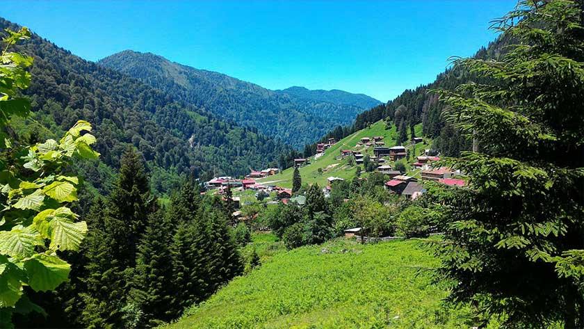 Trabzon Economic Program