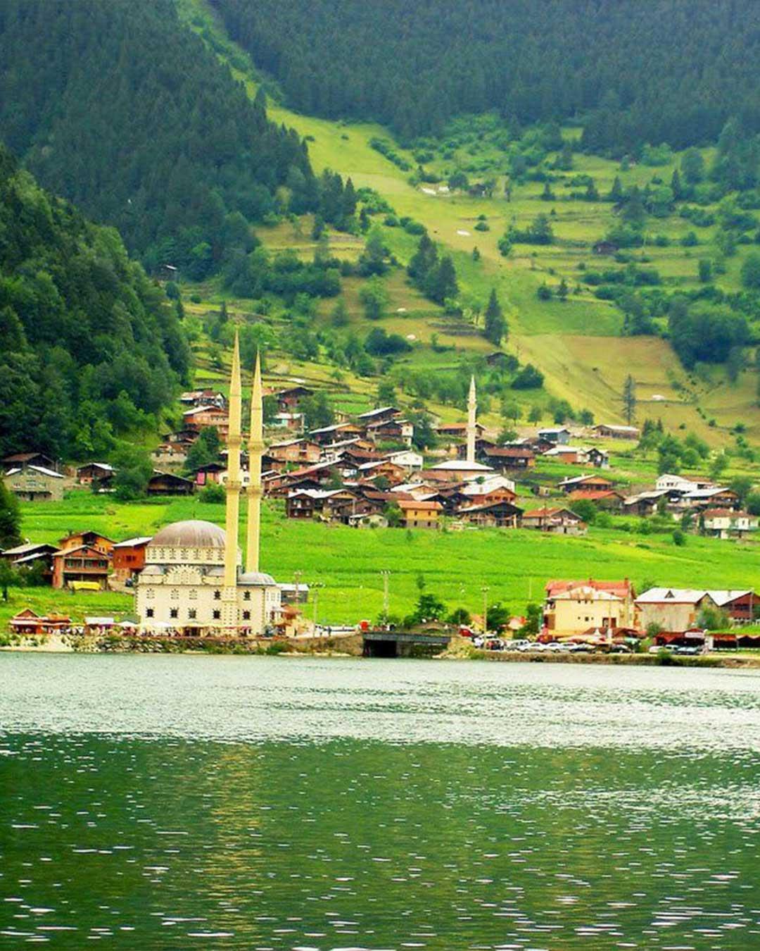 برنامج سويسرا تركيا